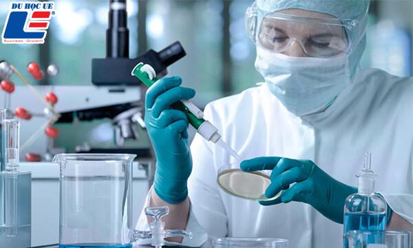 du học mỹ ngành y dược