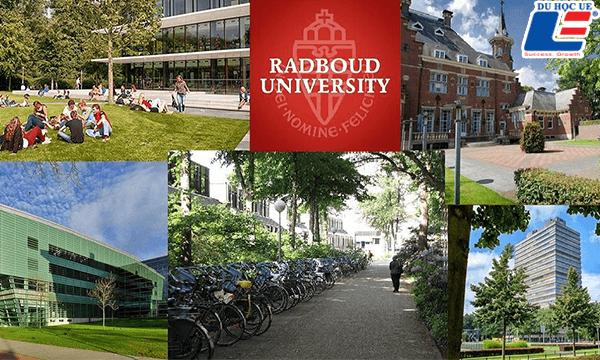 Trường Đại học Radboud - Hà Lan