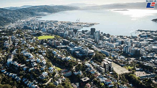 Đại học Victoria New Zealand
