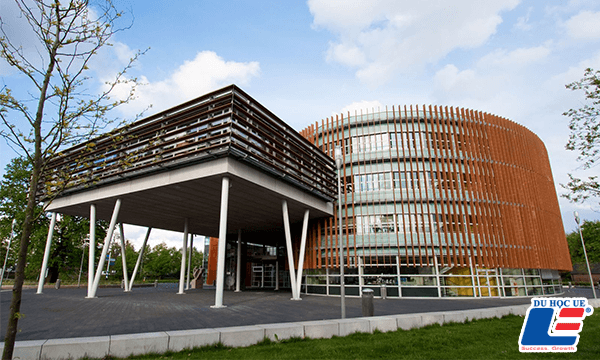đại học wittenborg hà lan