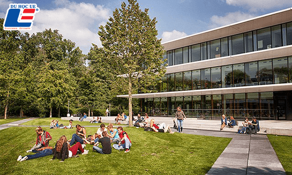 wittenborg university hà lan