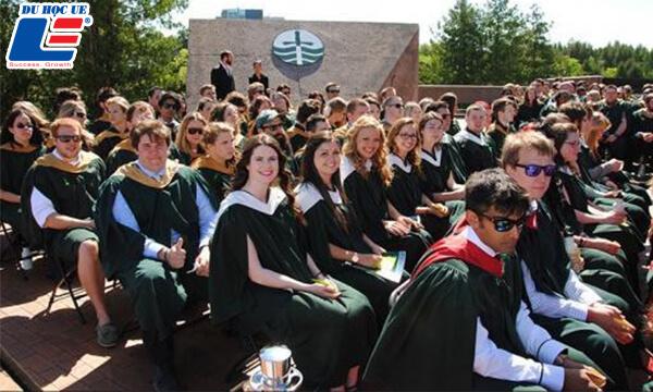 Học bổng cử nhân Đại học Trent hình 2