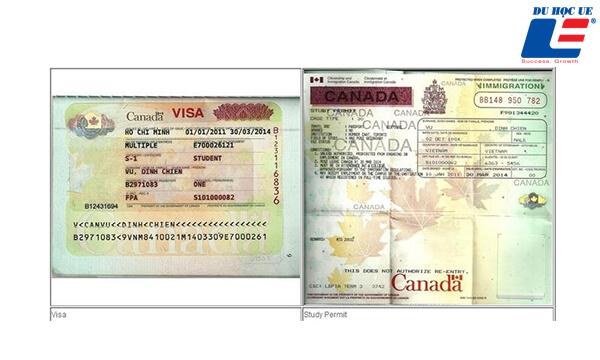phân biệt Study Permit và Visa du học Canada