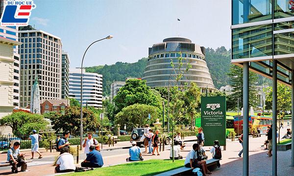 điều kiện du học New Zealand là gì