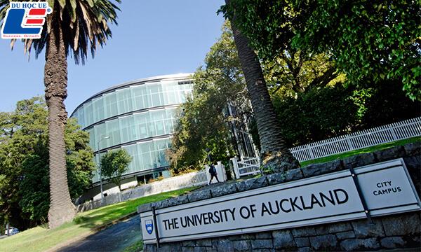 Học bổng 100% trường Đại học Auckland, New Zealand
