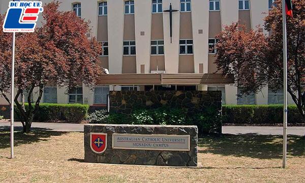 Học bổng Đại học Australian Catholic