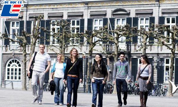 Du Học ngành Kinh doanh tại Hà Lan