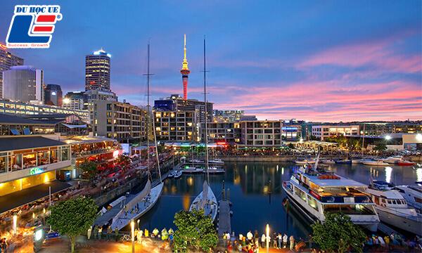 Học ngành Du lịch tại New Zealand