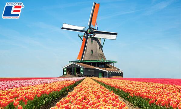 xin visa du học Hà Lan