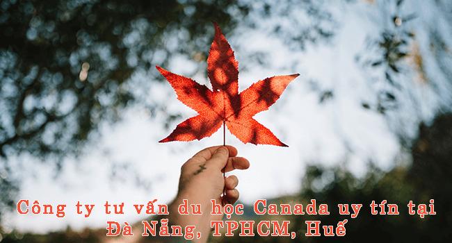 Công ty tư vấn du học Canada uy tín tại Đà Nẵng, TPHCM, Huế