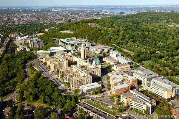 trường đại học Montreal-top 5 trường đại học ở canada
